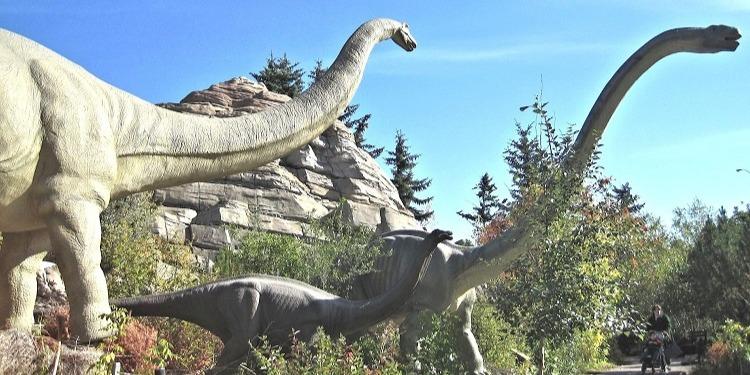 学生社会人シニア大人むけ短期長期語学留学 カナダ アルバータ州カルガリー 動物園 恐竜