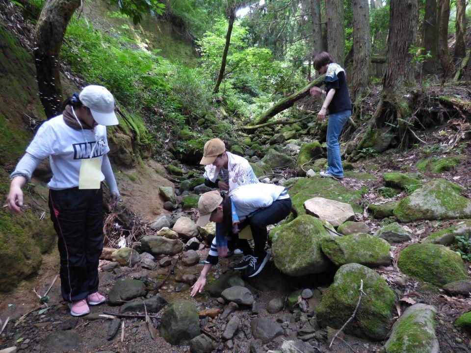 自然体験学習