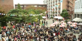 紫陵祭(大学祭)