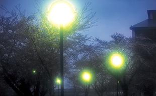 雪の夜のキャンパス