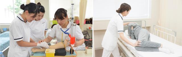 基礎看護学領域