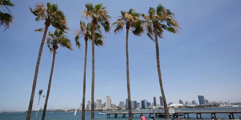 ISI国際学院ジュニア 小中高生の短期留学 アメリカ・サンディエゴ  英語+アクティビティ