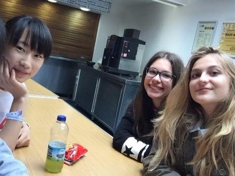 トビタテ!留学JAPAN緑茶