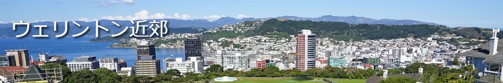 ニュージーランド 首都ウェリントン 高校留学 1年卒業ターム 公立校 女子校男子校共学 ホームステイ 2月 4月 7月入学 NCEA 帰国子女入試