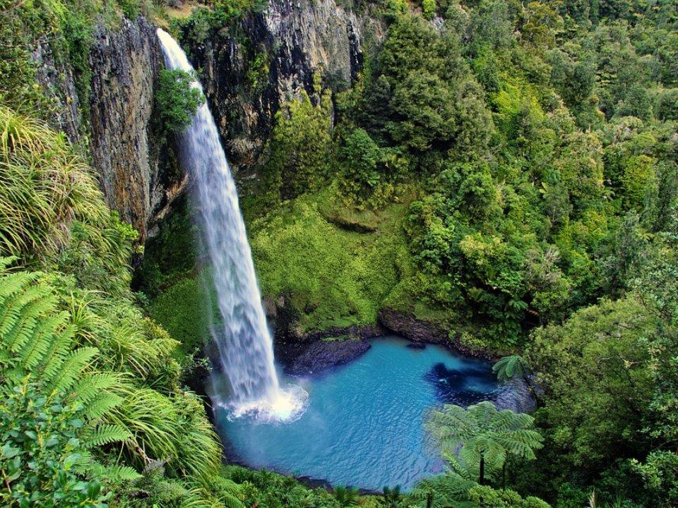 ニュージーランド高校留学(ターム・1年・卒業・私立・公立)オークランドウェリントンクライストチャーチ 溢れる大自然世界遺産