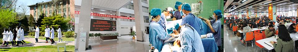 北京大学医学部留学