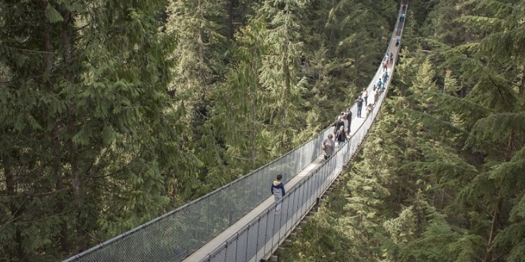 学生社会人シニア大人むけ短期長期語学留学 カナダ ブリティッシュコロンビア州 バンクーバー 観光 キャピラノ吊橋