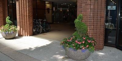 学生社会人シニア大人むけ短期長期語学留学 カナダ ブリティッシュコロンビア州 バンクーバー Eurocentres バンクーバー