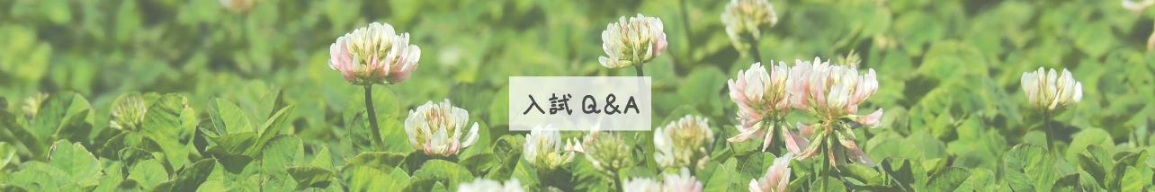 入試Q&A(学部)