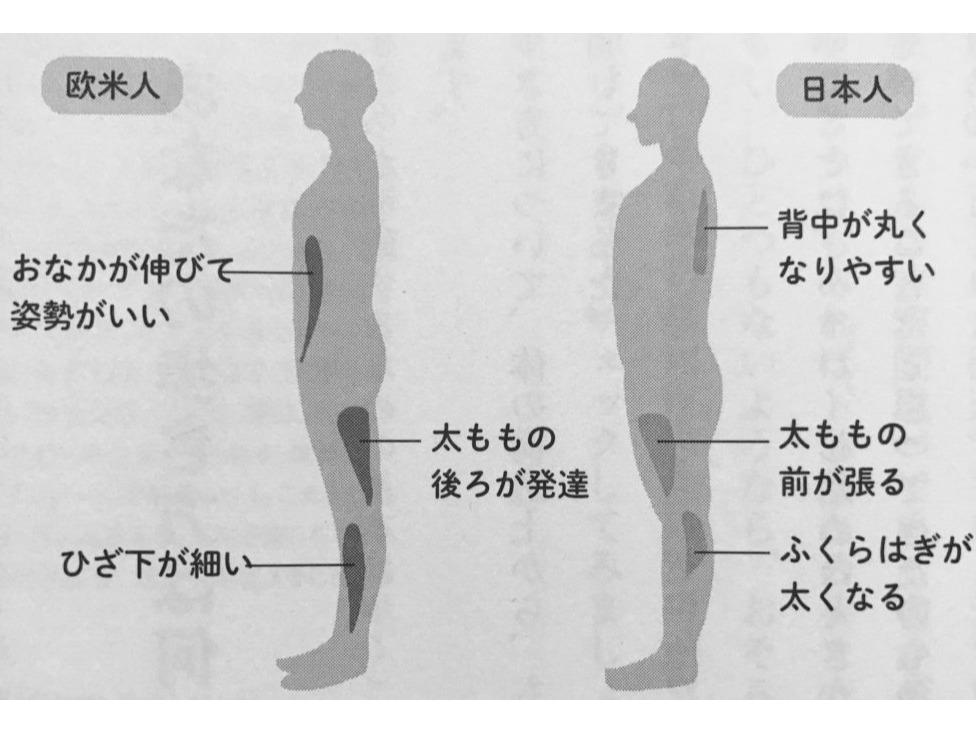 日本人の骨格 - 伊勢リハ☆ブログ - 学校法人協栄学園