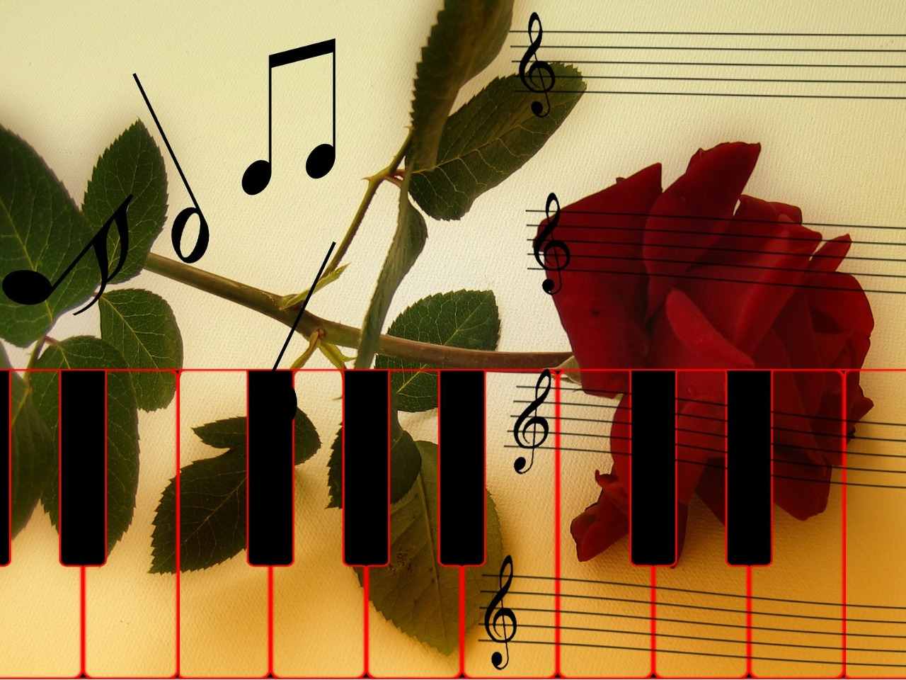 バラと音楽